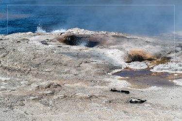 Steady Geyser in Yellowstone National Park in Wyoming
