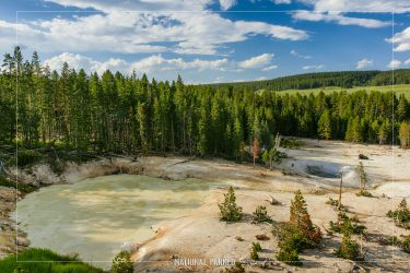 Sulphur Cauldron in Yellowstone National Park in Wyoming