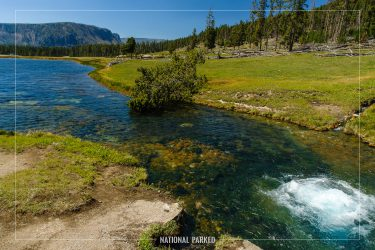 Terrace Spring in Yellowstone National Park in Wyoming