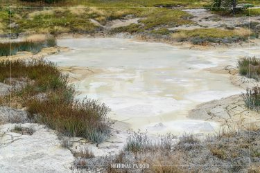 Thumb Paint Pots in Yellowstone National Park in Wyoming