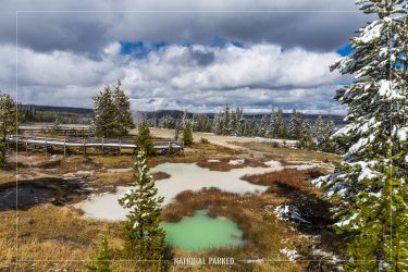 West Thumb Geyser Basin, Yellowstone National Park, Wyoming