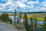 Yellowstone River Meadow in Yellowstone National Park in Wyoming