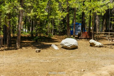 Hodgdon Meadow Campground in Yosemite National Park in California