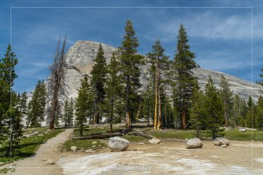 Lembert Dome in Yosemite National Park in California