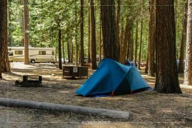 North Pines Campground in Yosemite National Park in California