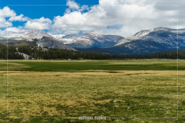 Tuolumne Meadows in Yosemite National Park in California