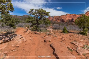 Timber Creek Overlook Trail in Zion National Park in Utah
