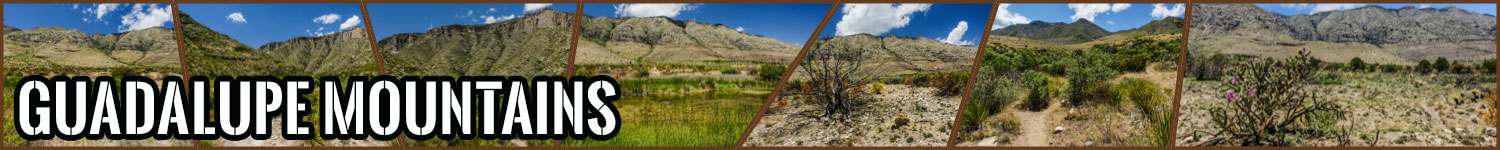 Guadalupe Mountains header image